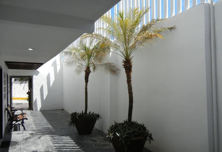 Hotel DNA Cancun, Kankuna, Pagalms
