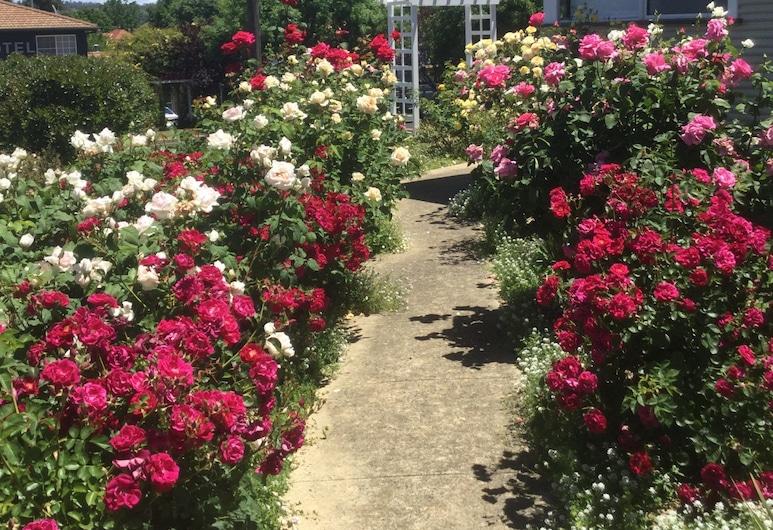 Costa Park Cottage Dio - Armidale, Armidale, Jardim