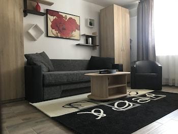 布加勒斯特米利塔里開放式公寓住宅 M4 飯店的相片