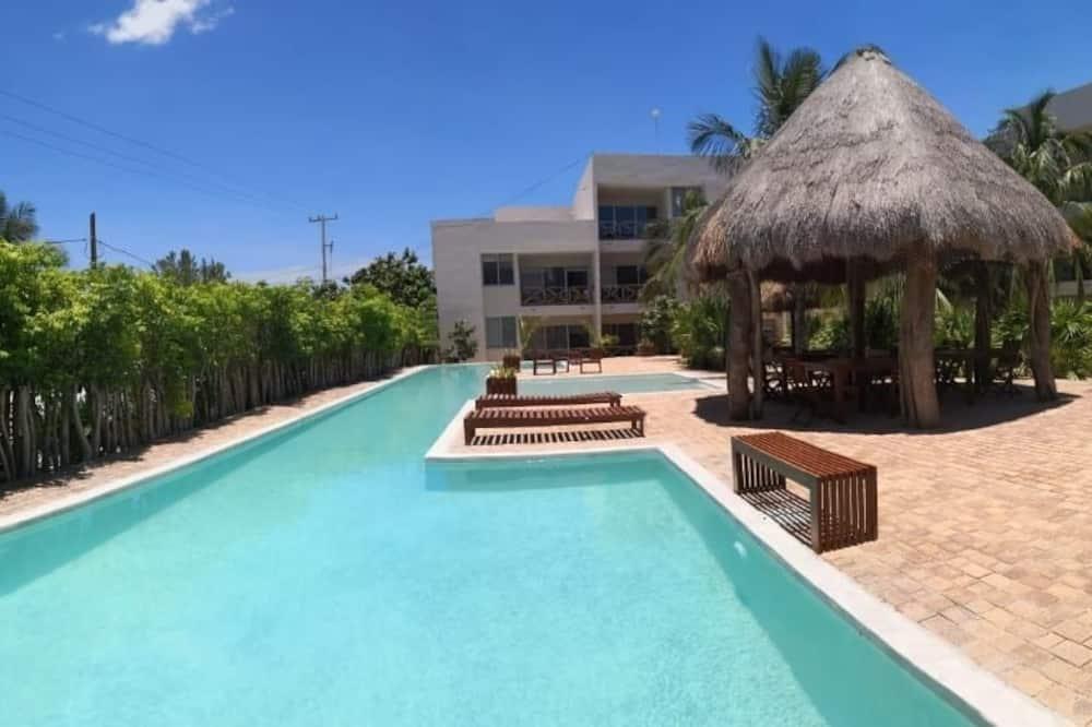 Los Cocos de Chacá Playa Progreso, Progreso