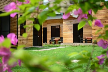 Slika: The Art - Golden Jungle House ‒ Ha Giang