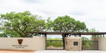 Slika: Mdluli Safari Lodge  ‒ Nacionalni park Kruger