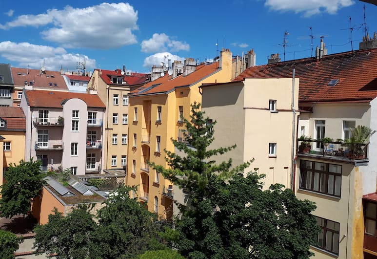 Marianeum, Prag, Außenbereich