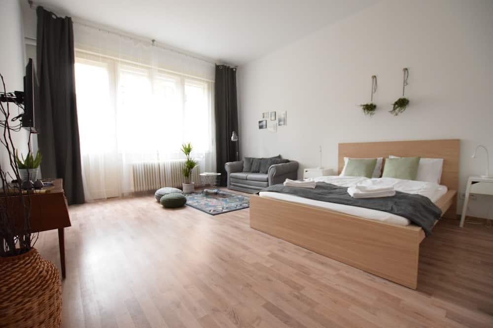 標準開放式客房 (102) - 客房