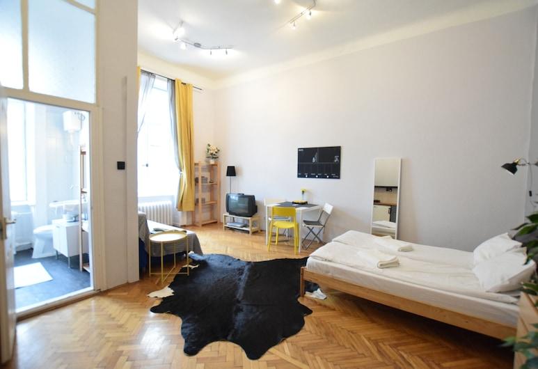 Budget Apartment by Hi5 - Nádor street, Βουδαπέστη, Στούντιο, Δωμάτιο