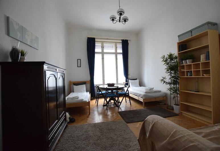 Budget Apartment by Hi5 - Városház 12., Budapeszt, Studio, Powierzchnia mieszkalna