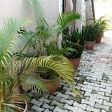Mayfair Gardens Surulere, Lagos