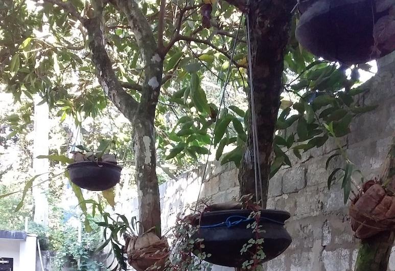 Sanjee'sHome & Lanka Ayurveda, Bentota, Garten