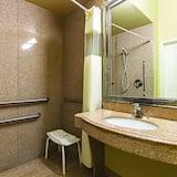 룸, 퀸사이즈침대 2개, 장애인 지원, 금연 (Mobility Accessible) - 욕실