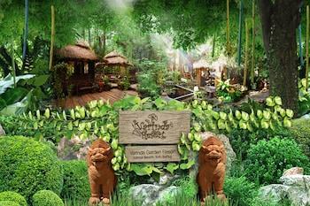 Restplasser til Koh Samui