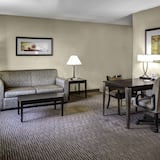 Business Suite, One King and One Sofa Bed - Living Area