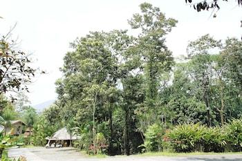 Foto di Hotel Kokoro Arenal a Fortuna
