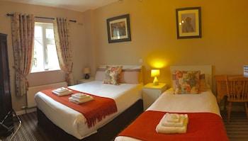 Killarney — zdjęcie hotelu Cherry Tree Guesthouse