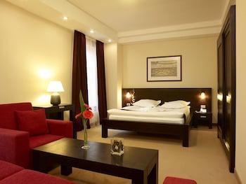 Hình ảnh Hotel Cherica tại Constanta
