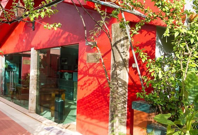 코임브라 호텔 & 스파, 비사우