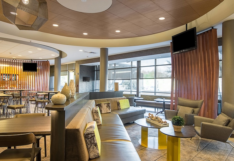 SpringHill Suites by Marriott Tampa North/I 75 Tampa Palms, Tampa, Predvorje