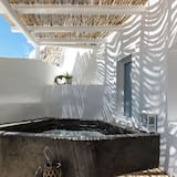 Two Bedroom Villa with Private Outdoor Jacuzzi - 特色相片