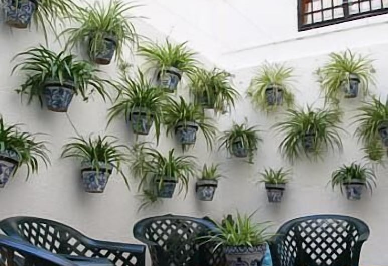 Hotel Almona, Granada, מרפסת/פטיו