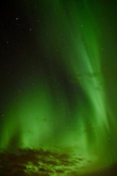 Foto van Arctic Nature Hotel in Selfoss
