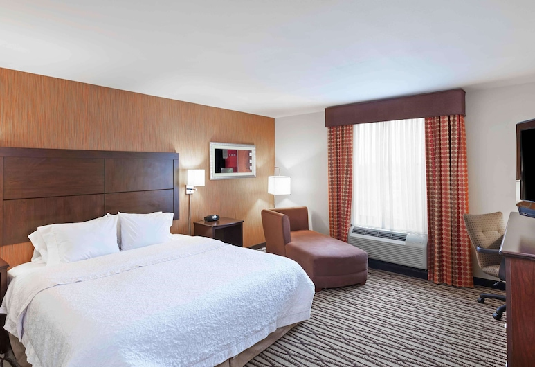 Hampton Inn & Suites Morgan City, LA, Morgan City, Habitación, 1 cama King size, Habitación