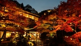 Hotel Kobe - Vacanze a Kobe, Albergo Kobe