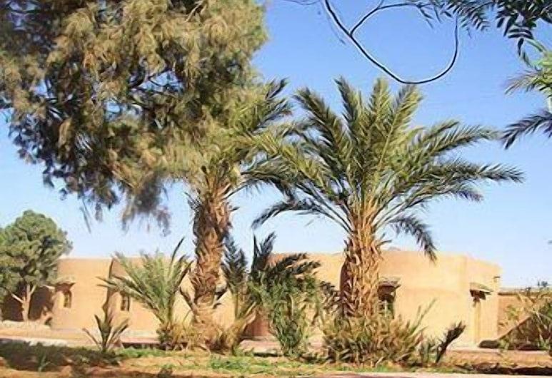 Hotel Camping Hamada du Draa, M'Hamid El Ghizlane, Bahçe
