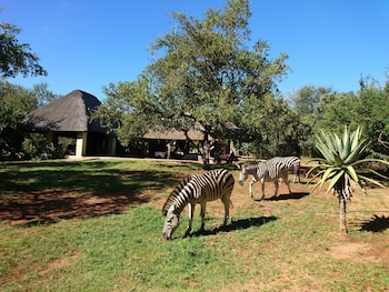 Foto van Royal Kruger Lodge in Marloth Park