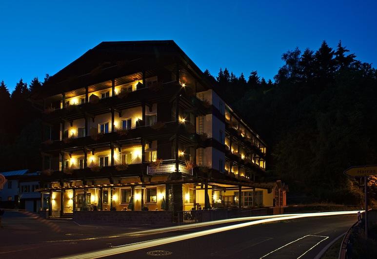 Hotel am Steinbachtal, Bad Kötzting, Fachada del hotel de noche
