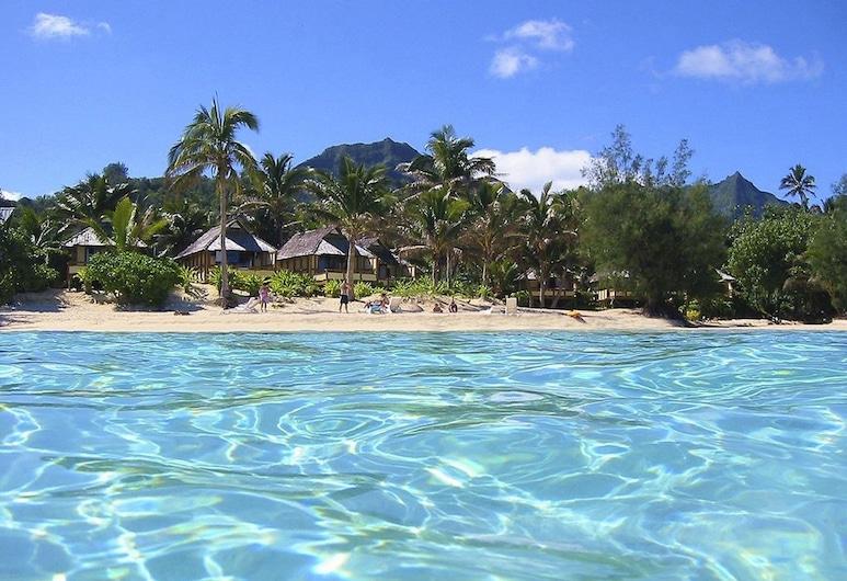 Palm Grove, Rarotonga, Blick vom Hotel