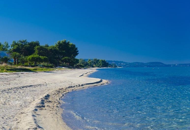Elinotel Apolamare Hotel, Kassandra, Beach