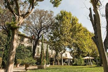 Arles bölgesindeki Le Mas Saint-Florent resmi