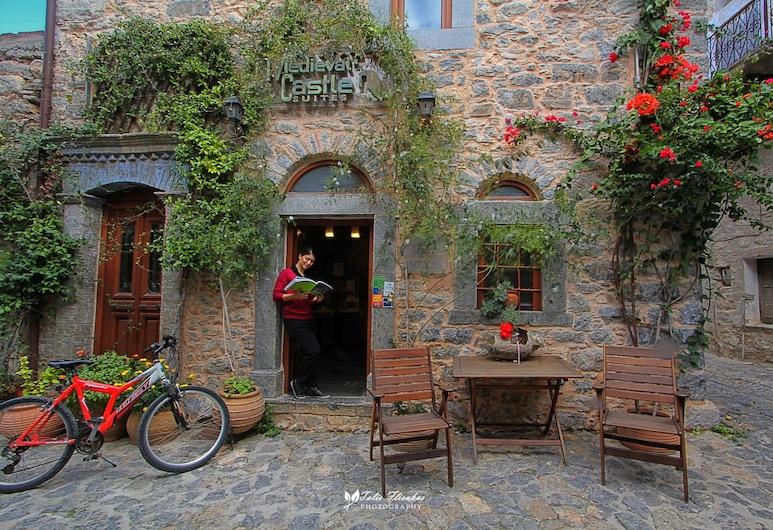 Medieval Castle, Quíos, Entrada del establecimiento