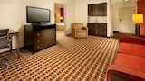 Choose This Business Hotel in Smyrna -  - Online Room Reservations