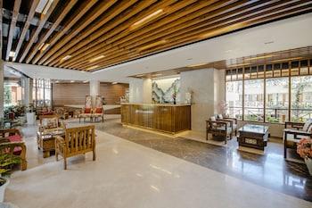 תמונה של Snow Valley Resorts בManali