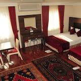 Standard Single Room - Living Room