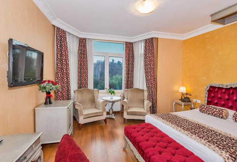 Hotel Santa Hill, Istanbul, Vierashuone