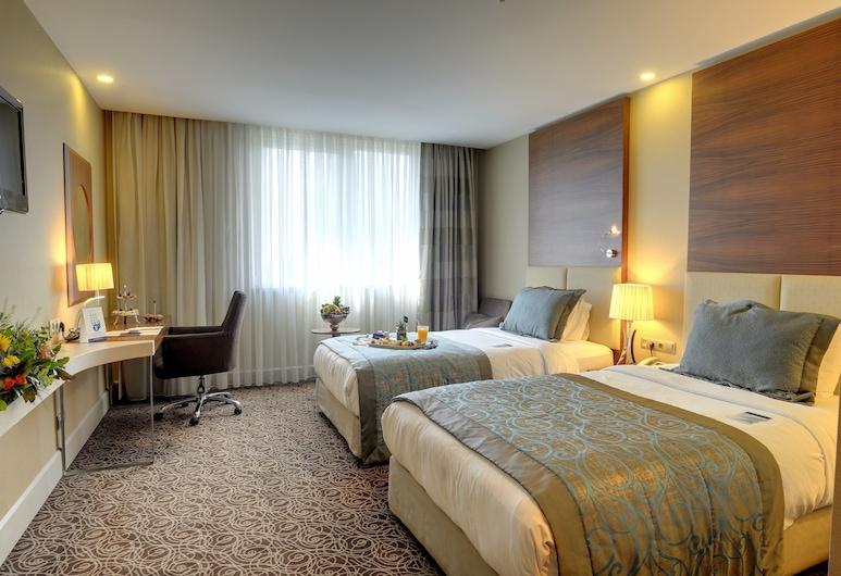 New Park Hotel Ankara, Ankara, Deluxe İki Ayrı Yataklı Oda (Park View), Oda Manzarası