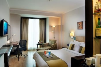 Picture of Goldfinch Hotel Delhi in Faridabad