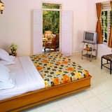 高級單人房, 1 張標準雙人床 - 客房