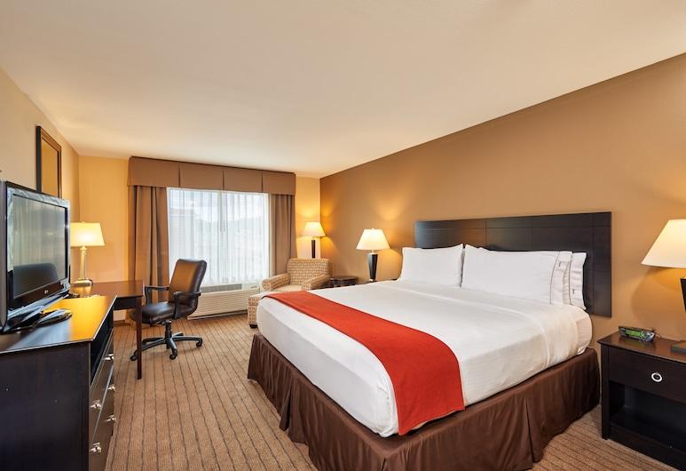 Holiday Inn Express & Suites El Paso Airport Area, El Paso, Svit - 1 kingsize-säng - icke-rökare, Gästrum