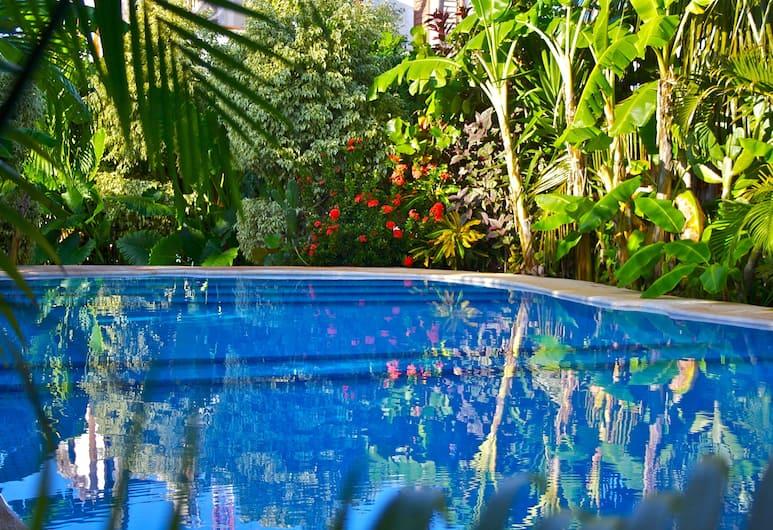 Hotel Casa Barbara, Isla Holbox, Välibassein