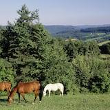 Štandardná dvojlôžková izba - Výhľad na údolie