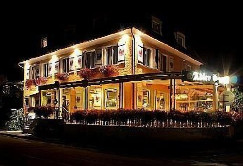 Adler Hotel & Gasthaus, Nonnenhorn, Viešbučio fasadas vakare / naktį