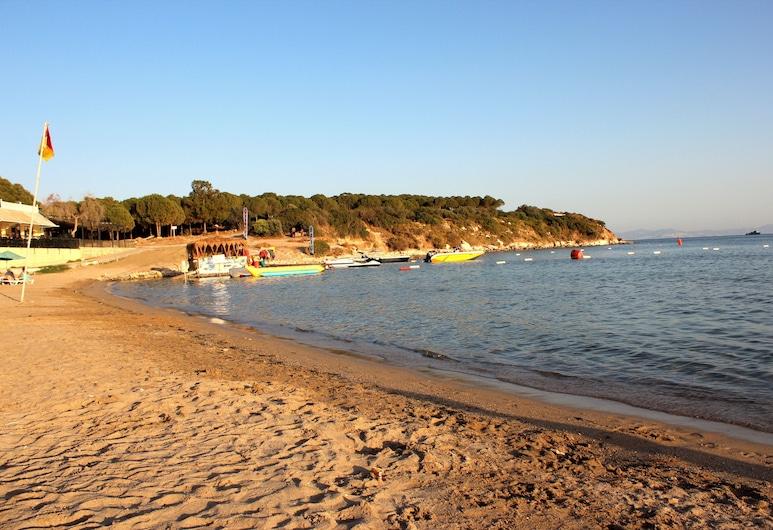 Tasan Apart Otel, Didim, Beach