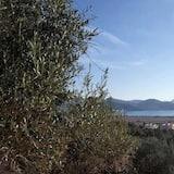 Superior Villa - Water view