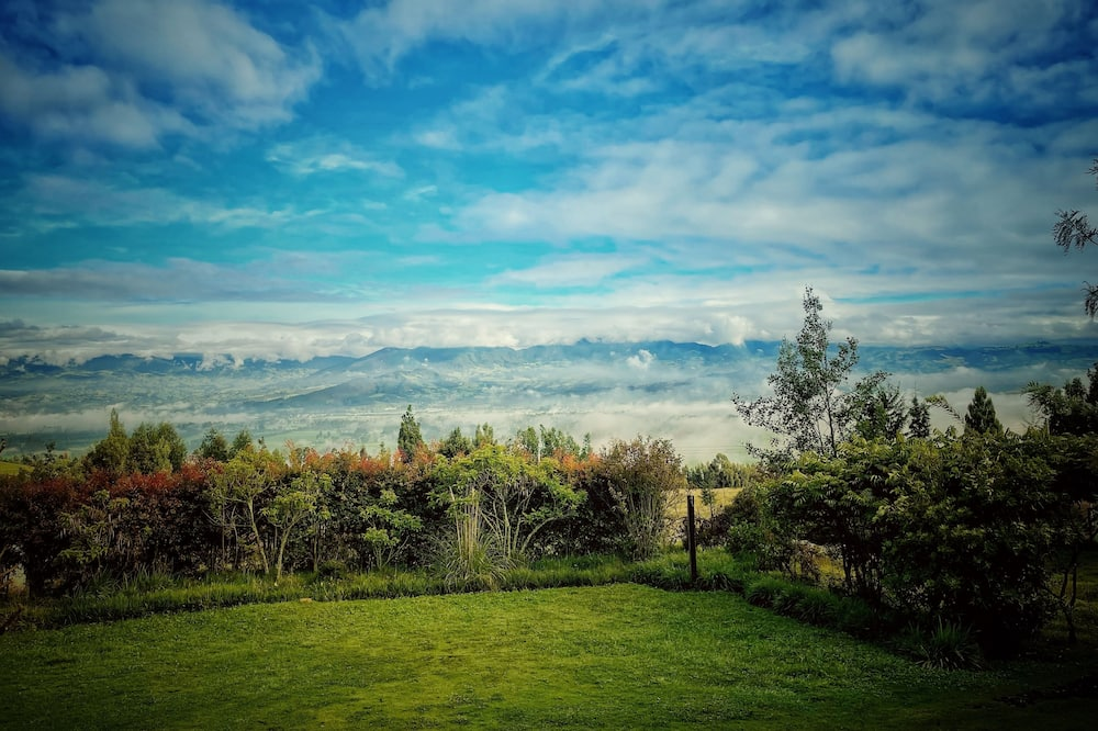 Standard Studio Suite - Mountain View