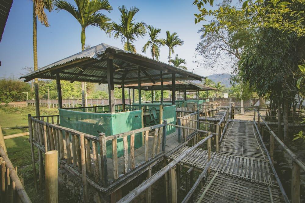 Green Ashiyana Resort, Golaghat