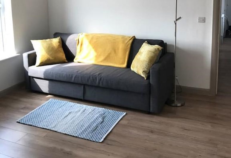 Contemporary Apartment, Belfast, Tomannsrom, Stue