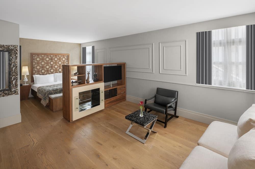 豪华客房 - 起居室