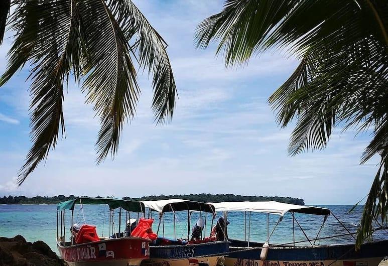 Coconut Hostel Playa Estrella, Bocas del Toro, Tekne Turu